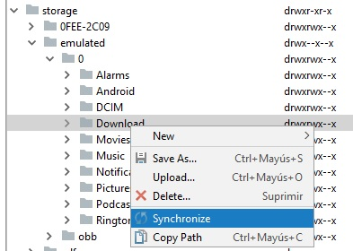Archivo:PDM AndroidStudio avd sd 4b.jpg