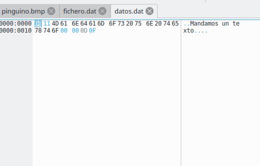 Archivo:Prog ficher binario 4.png