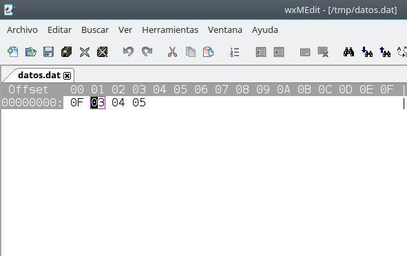 Archivo:Prog ficher binario 5.JPG