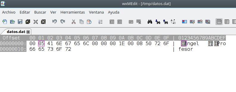 Archivo:Prog ficher binario 2.jpg