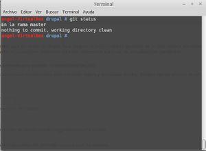 Drupal instalacion git 2.jpg