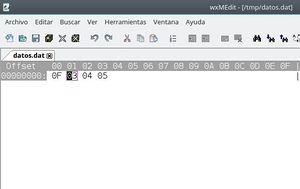 Prog ficher binario 5.JPG