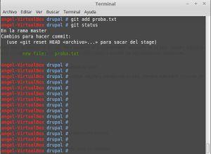 Drupal instalacion git 4.jpg
