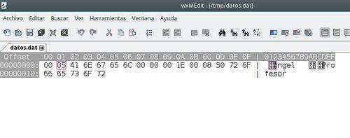 Prog ficher binario 2.jpg